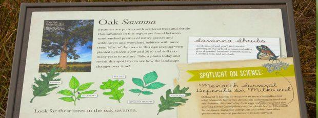 Interpretive Panel Old-Savana